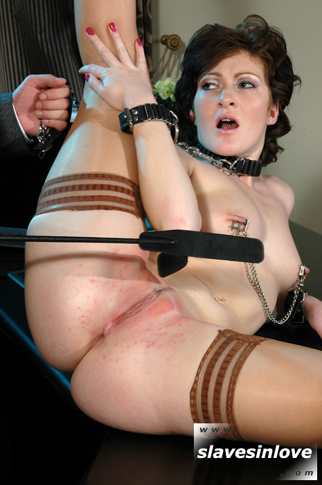 Cuffed and collared secretary pussy whipping
