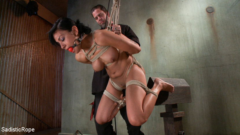 Roped slut is about to be put on top of the BDSM device