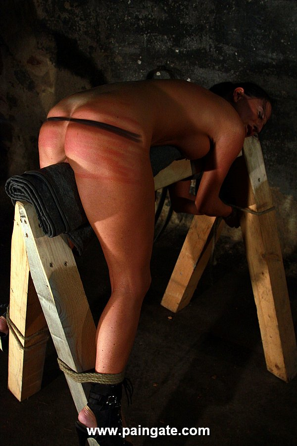 Slave on top of the BDSM horse and whipped