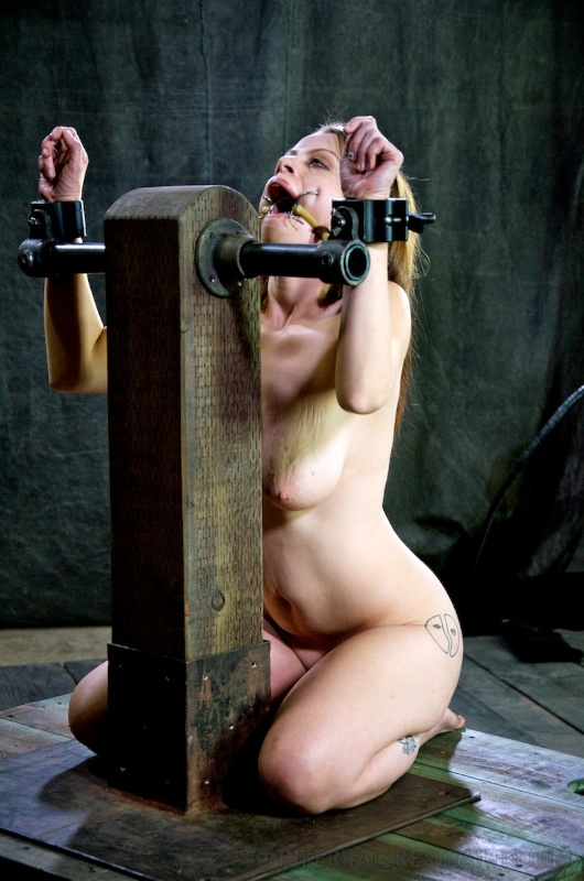 Sexy naked woman is locked int BDSM rack with two steel cuffs