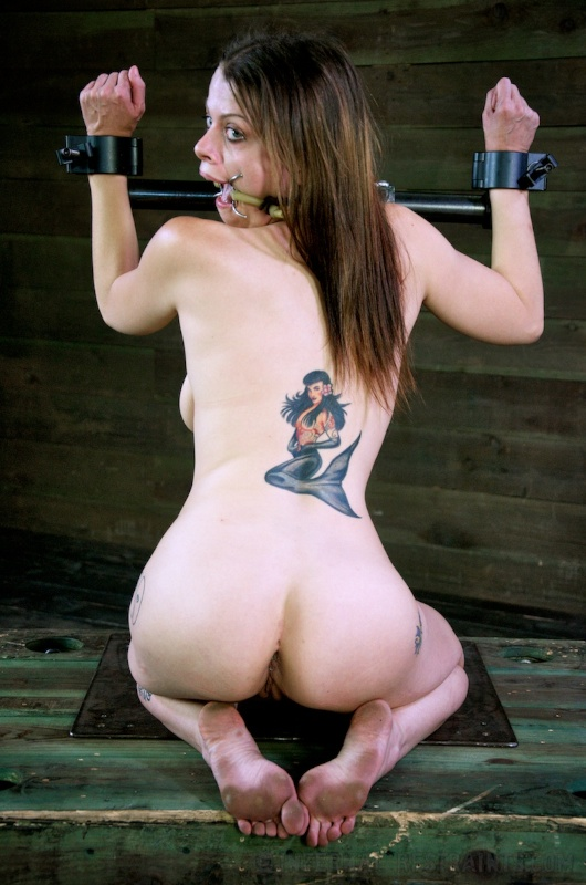 Sexy gal is stripped down. ring-gagged and made to kneel in BDSM restraints