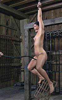Whipping BDSM torture for suspended woman
