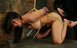 Falaka for nasty tied up asian (Jan 2011)
