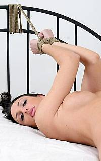 Sexy model is tied to bed