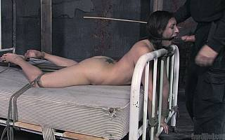 Training of a cocksucking BDSM slut