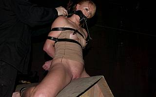 Wooden pony rider is tied up (Oct 2011)