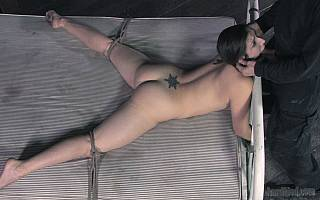 Wife in bondage is in the middle of degrading training (Jun 2012)