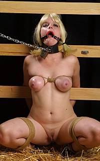 Ring gagged girl with bound breasts