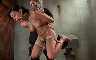 Woman is being positioned on top of the BDSM device (Nov 2013)
