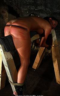 BDSM horse and whipping torture