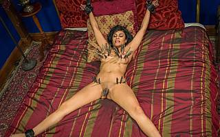 Nude MILF is spread-bound to bed posts
